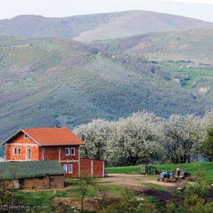 Fshati-Brus-foto-01
